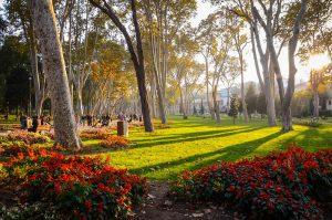 پارک گلخانه